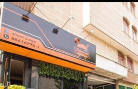 رستوران آلونی برگر