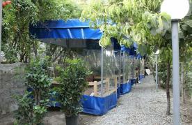 باغ رستوران مهروماه